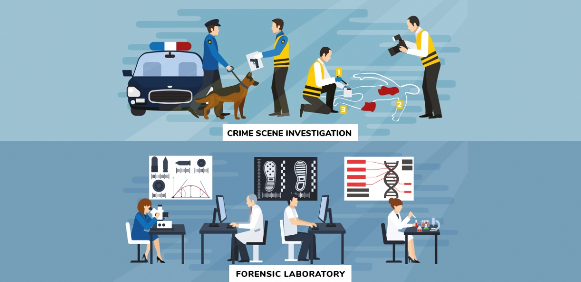 FORENSIC ANALYSE